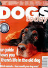 dogs_today2001